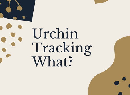 A look into the world of the Urchin Tracking Module aka UTM Code.