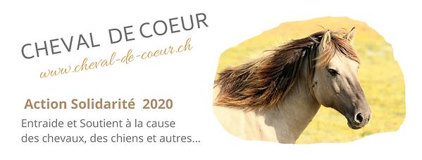 solidarité_2020.png