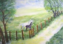 horses-21368_640.jpg