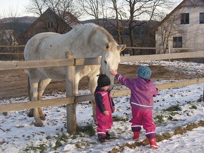 Enfant et cheval.jpg