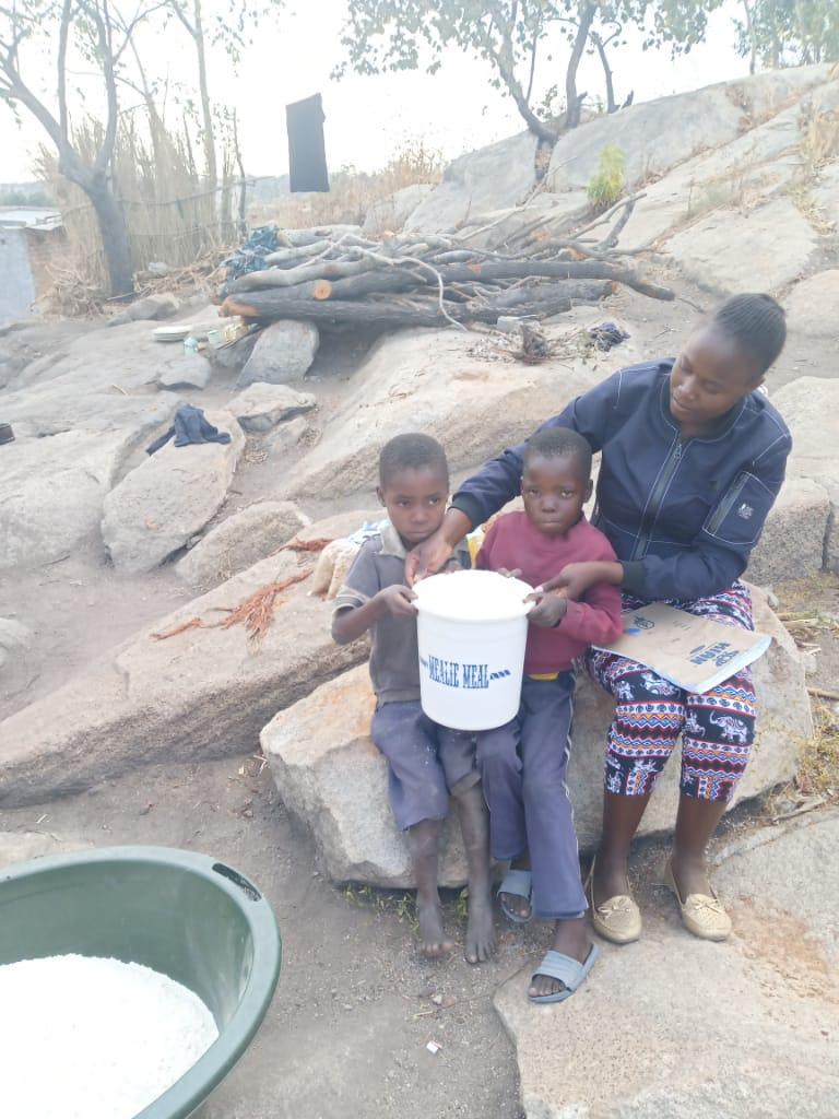 Zimbabwe COVID-19 relief response