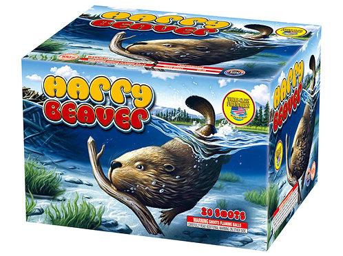 Harry Beaver