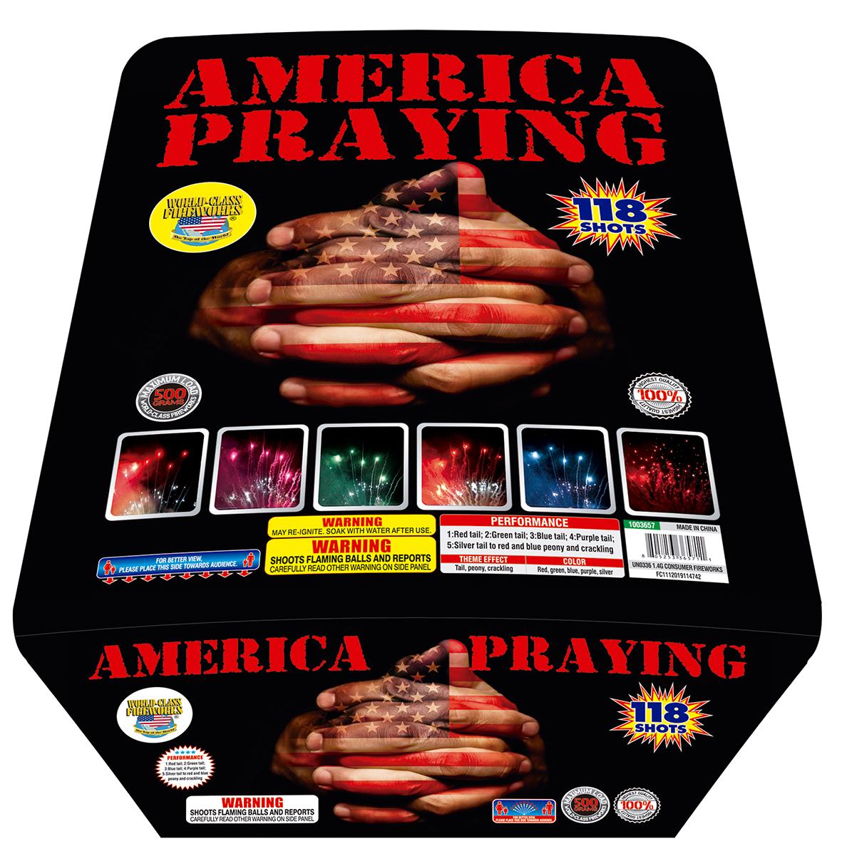 America Praying