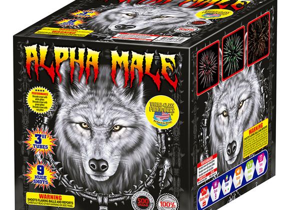 Alpha Male Finale Fireworks Cake