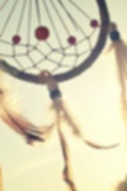 Dromenvanger-2.jpg