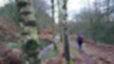 Me in the woods.jpg