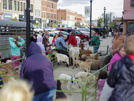 June First Friday to Feature Petting Zoo & Local Charities