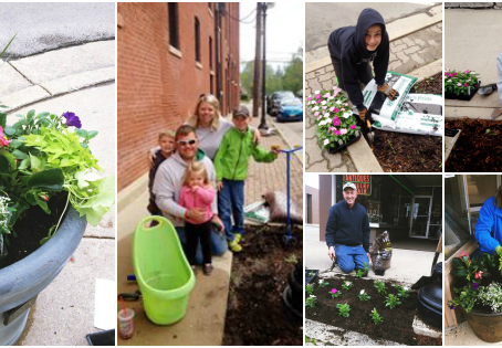 Adopt-A-Box Downtown Planting Day!