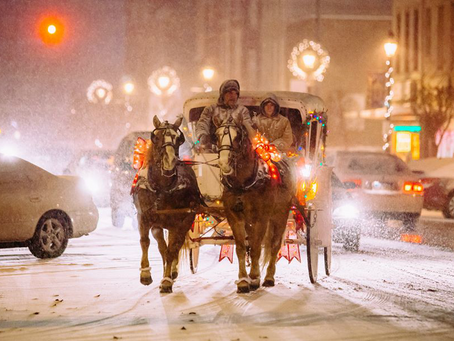 Help Us Bring FREE Horse Carriage Rides to Downtown Greenville This Holiday Season!