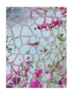 flowers in a grid