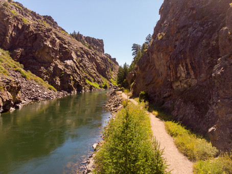 Pine Creek Trail Gunnison, Colorado