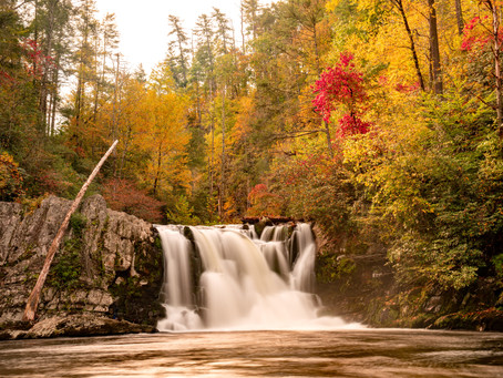 Looking for a great hike in the Smoky Mountains? Don't miss Abrams Fall Hike