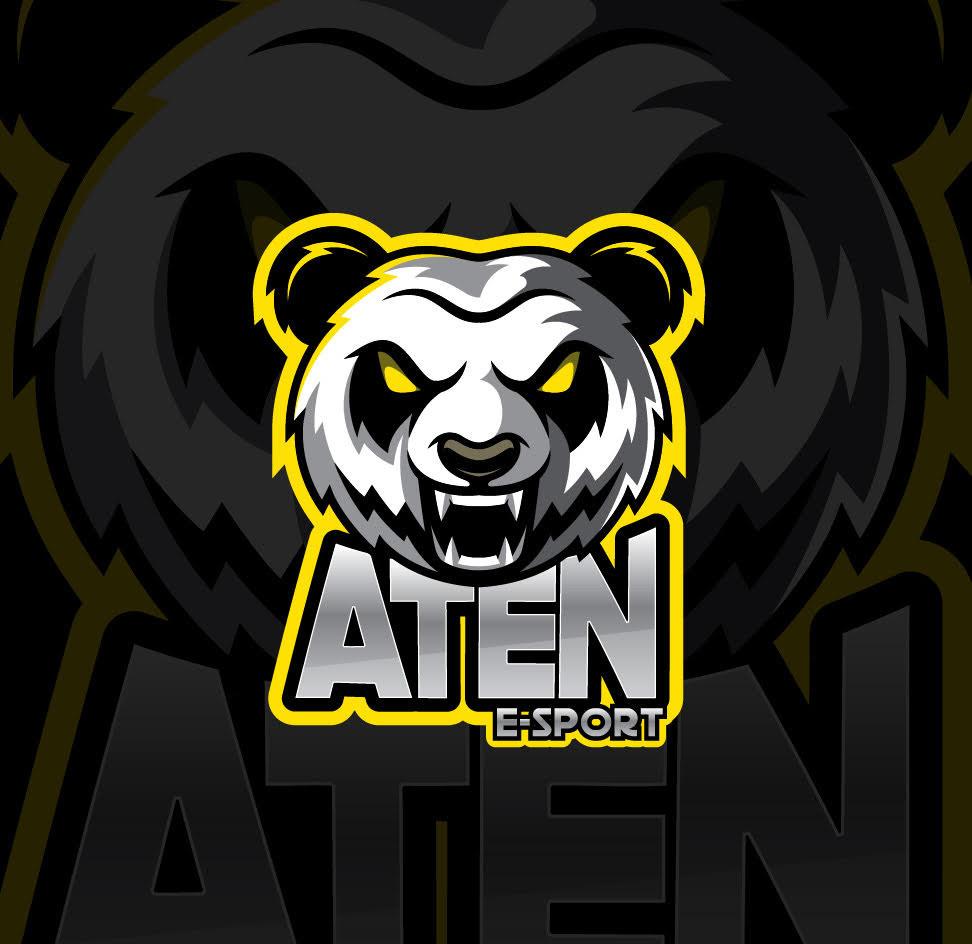 Le rôle d'Aten E-Sport