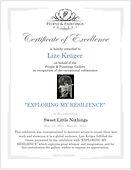 People & Paintings Gallery Certificate