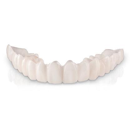 Partial Demo Model with Partial Denture