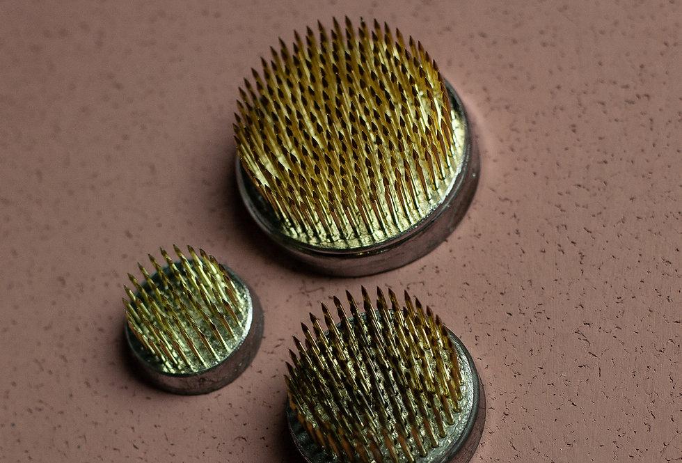 Starter Set Pin Frogs/ Starter Set Steckigel