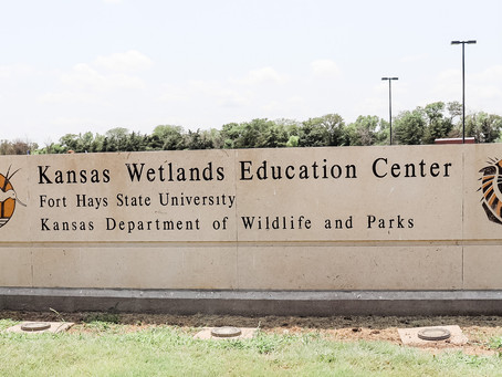 Cheyenne Bottoms and The Kansas Wetlands Education Center