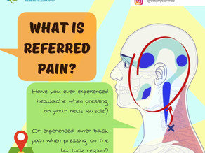 What is referred pain?