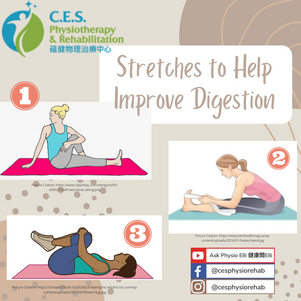 Stretches to Help Improve Digestion