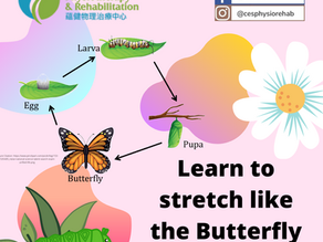 Learn to Stretch Like the Butterfly Life Cycle