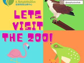 Let's Visit the Zoo!