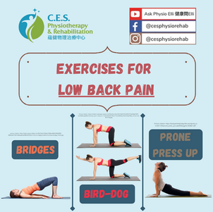 Mckenzie Extension Exercises