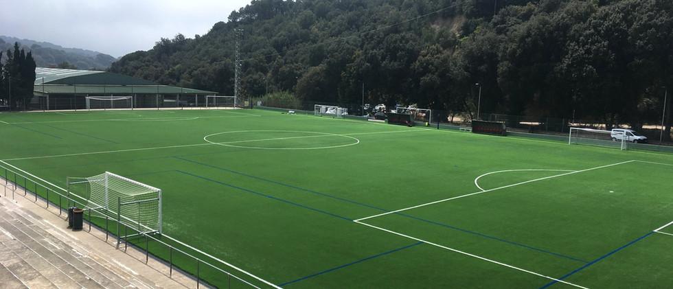 Substitucio_gespa_camp_de_futbol.jpeg