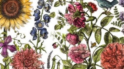 Botanist's Journal 24x33 Decor Transfer™ - Iron Orchid Designs