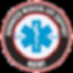 amls_logo.png