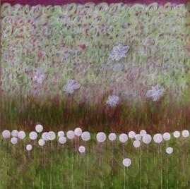 Métamorphose - L'effet printemps
