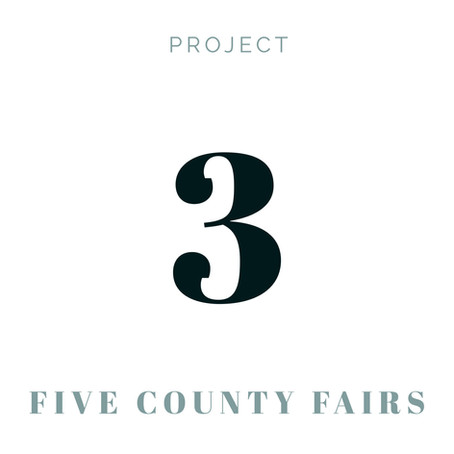 Project 3 - Five Minnesota County Fairs