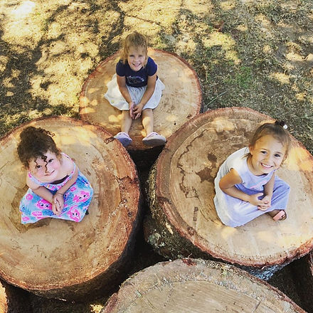 Tree play.jpg