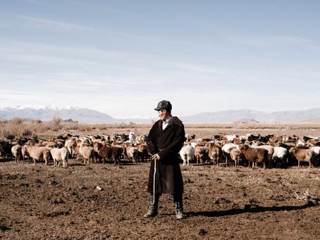 Pan, Mój Dobry Pasterz