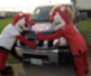 York University Mascots Love their NFL
