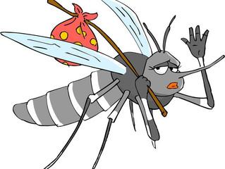 10 rimedi NON chimici per le zanzare