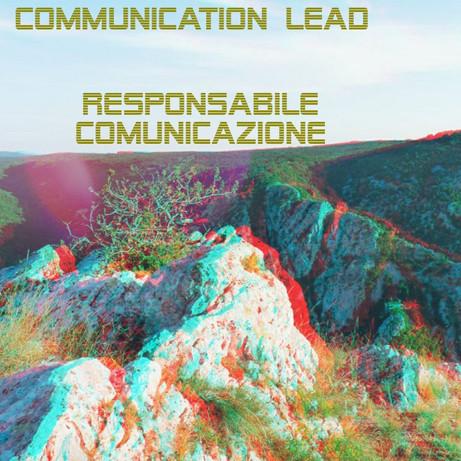 Responsabile della comunicazione