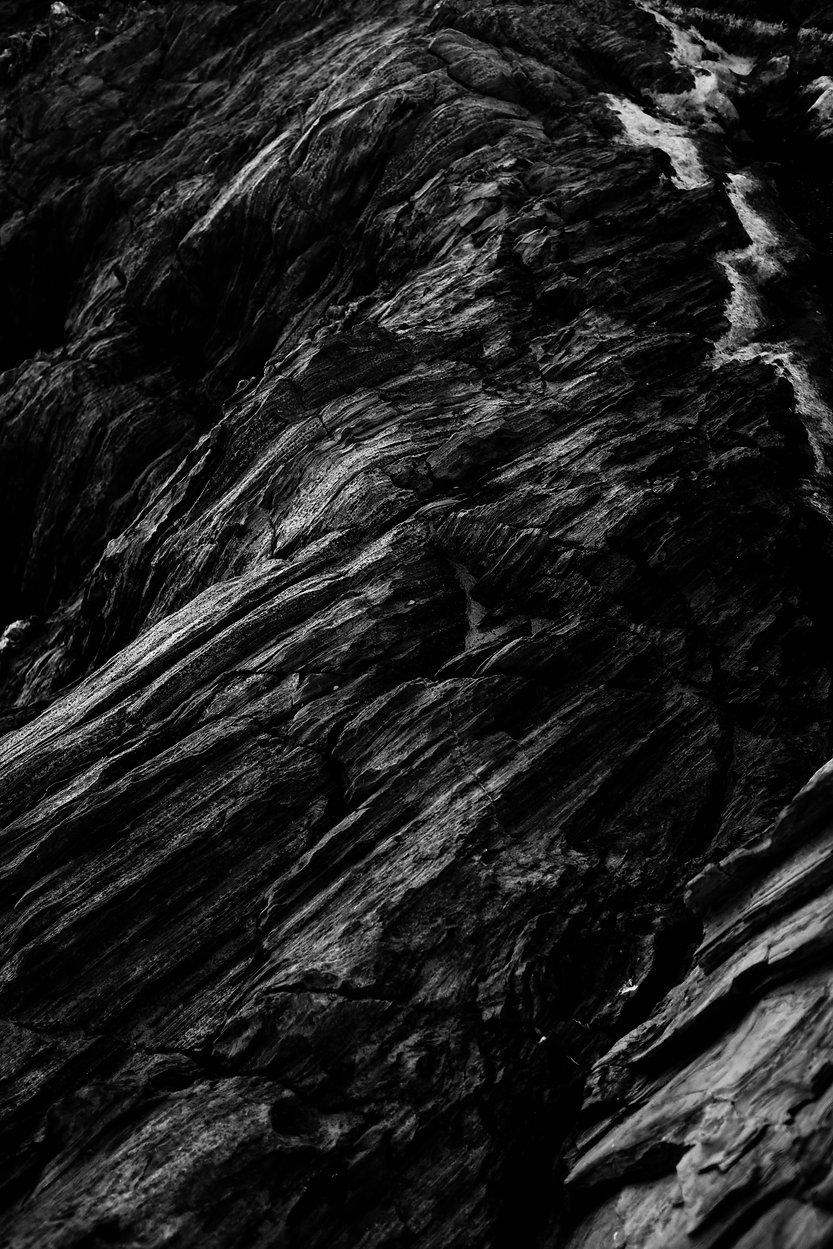 pexels-adrien-olichon-2931270.jpg