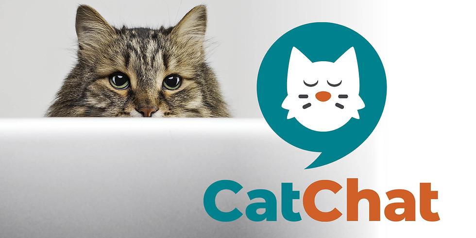 Cat Chat Test