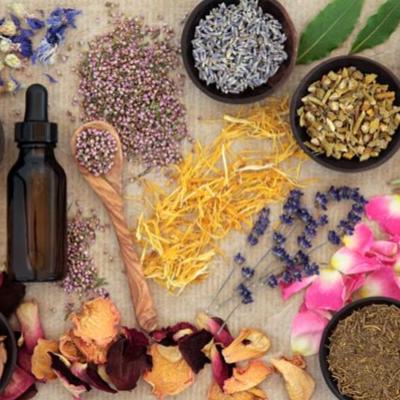 herbalist.png