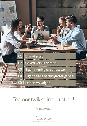 Teamontwikkeling cover page.png