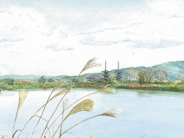 薬師寺望郷
