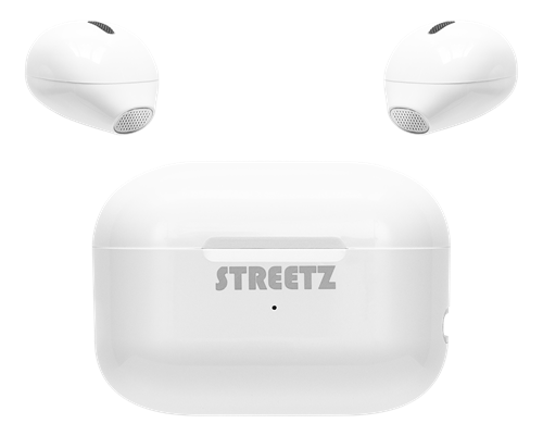 True Wireless Mini earbuds with charging case