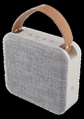 STREETZ portable water resistant Bluetooth speaker