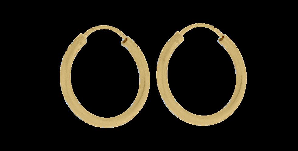 Forgyldte glitrende creoler - forgyldte hoops