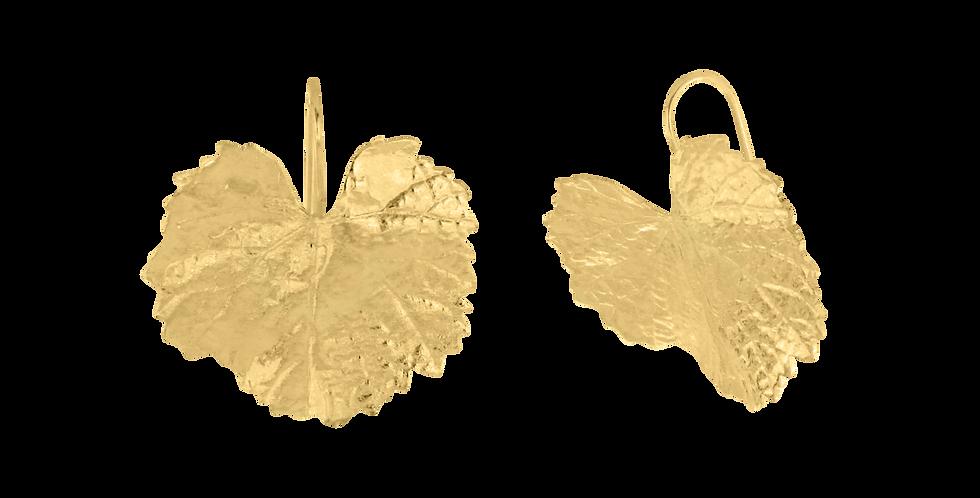 Forgyldte øreringe med åkandeblad - leaf