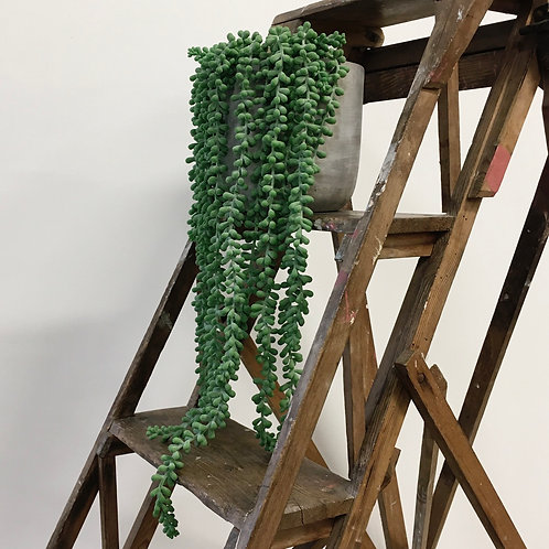 Faux String of Pearls