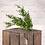 Thumbnail: Faux Mini Eucalyptus Bush - Green