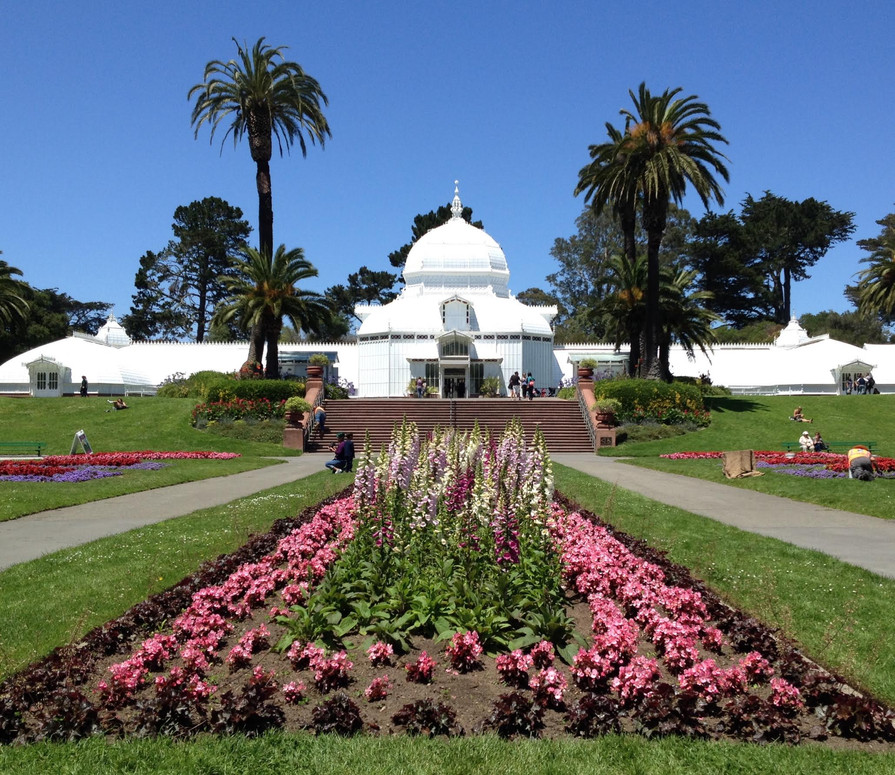 Explore the Conservatory of Flowers
