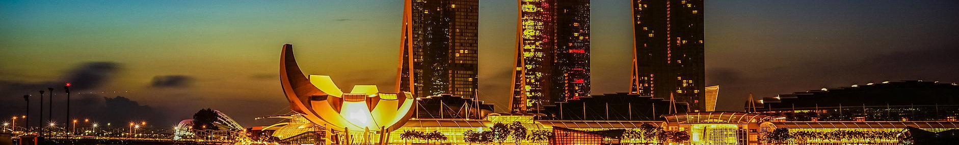 Singapore Backdrop views.jpg