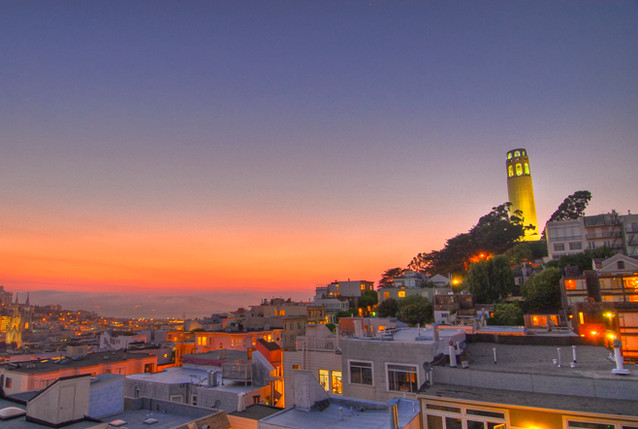 Witness Panoramic Views at Coit Tower